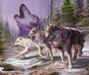 wolfs-call